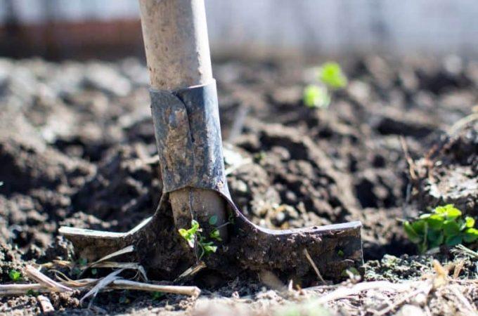 Building Your Garden Tool Kit